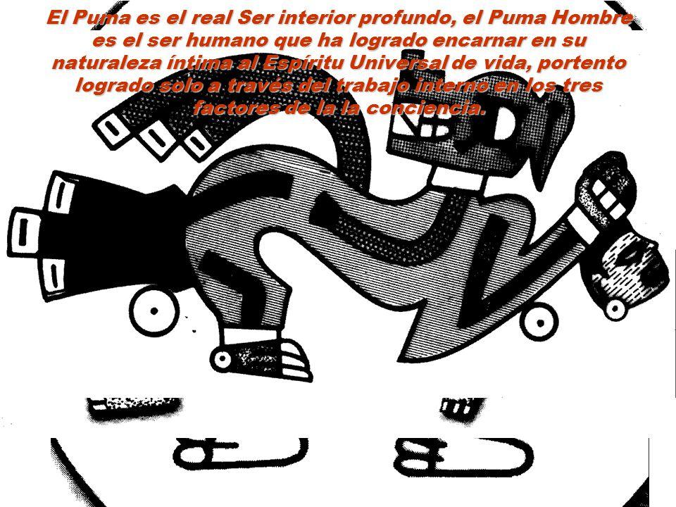 El Puma es el real Ser interior profundo, el Puma Hombre es el ser humano que ha logrado encarnar en su naturaleza íntima al Espíritu Universal de vida, portento logrado solo a través del trabajo interno en los tres factores de la la conciencia.