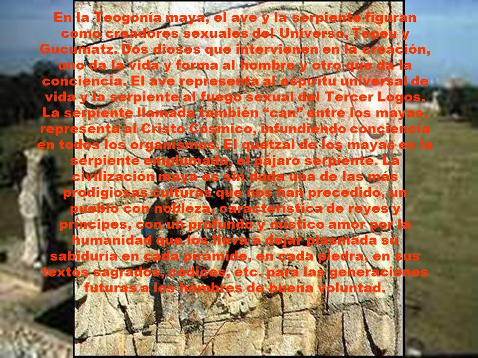 En la Teogonía maya, el ave y la serpiente figuran como creadores sexuales del Universo, Tepeu y Gucumatz.