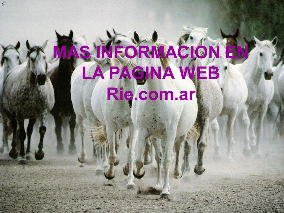 MAS INFORMACION EN LA PAGINA WEB Rie.com.ar