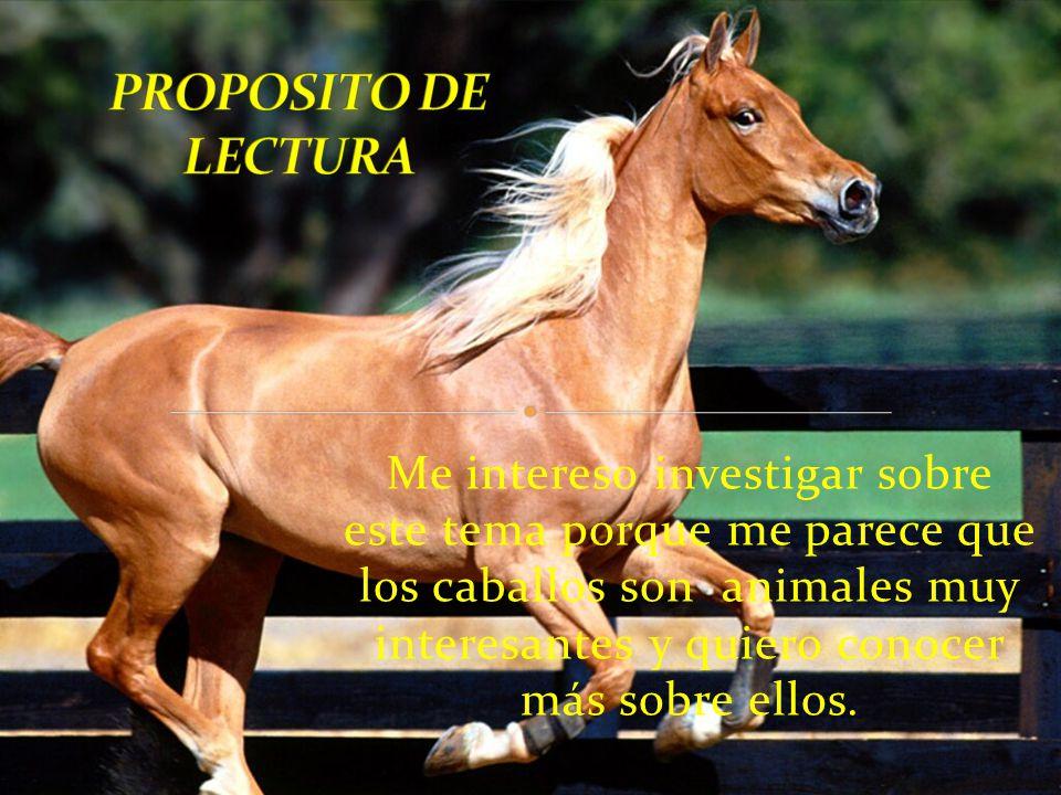 PROPOSITO DE LECTURA