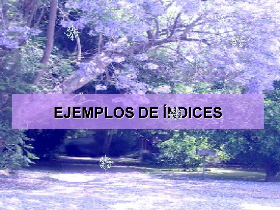 EJEMPLOS DE ĺNDICES