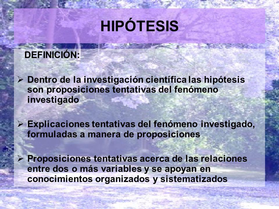 HIPÓTESIS DEFINICIÓN: