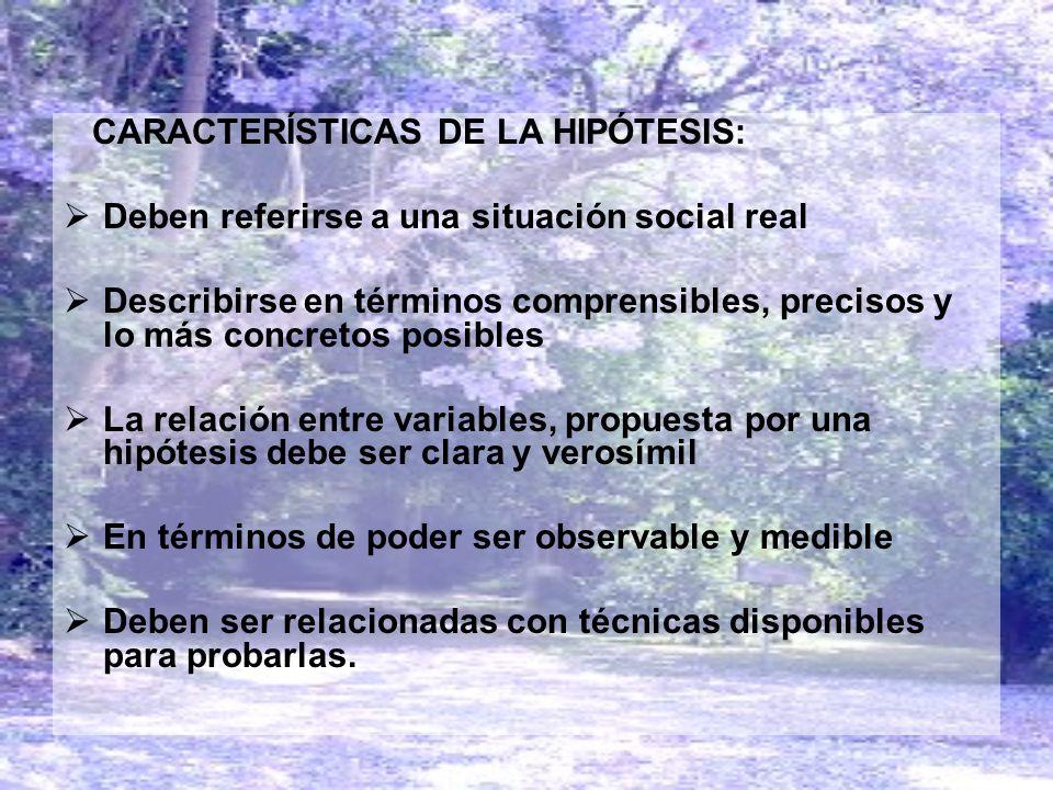 CARACTERÍSTICAS DE LA HIPÓTESIS: