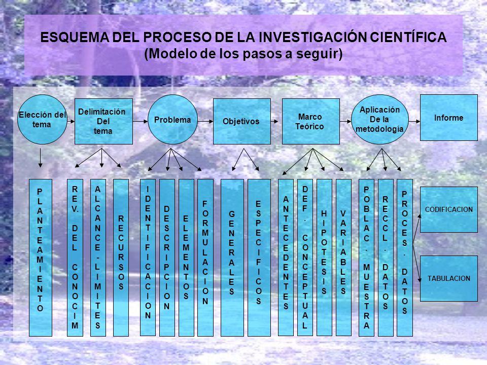 ESQUEMA DEL PROCESO DE LA INVESTIGACIÓN CIENTÍFICA (Modelo de los pasos a seguir)