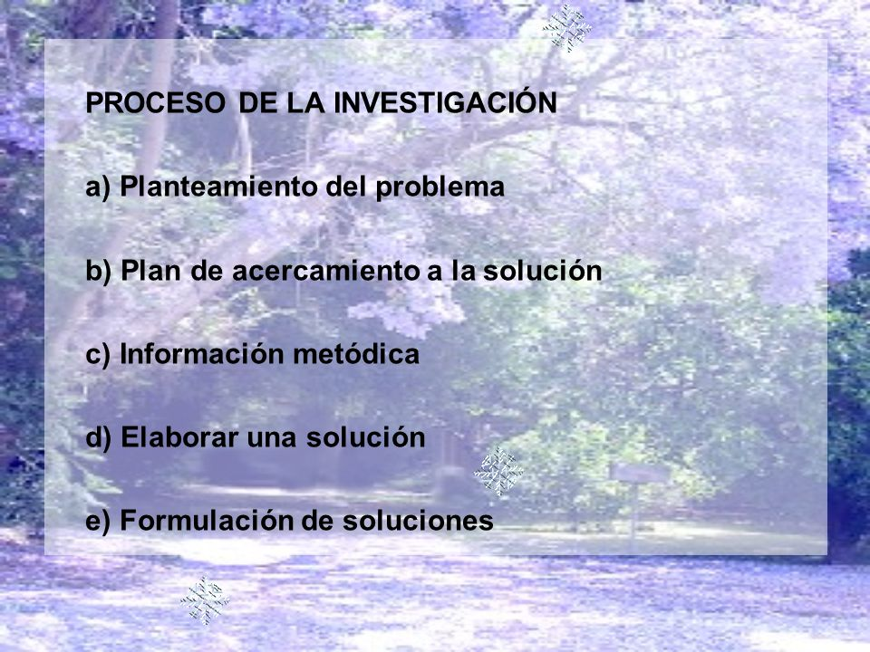 PROCESO DE LA INVESTIGACIÓN