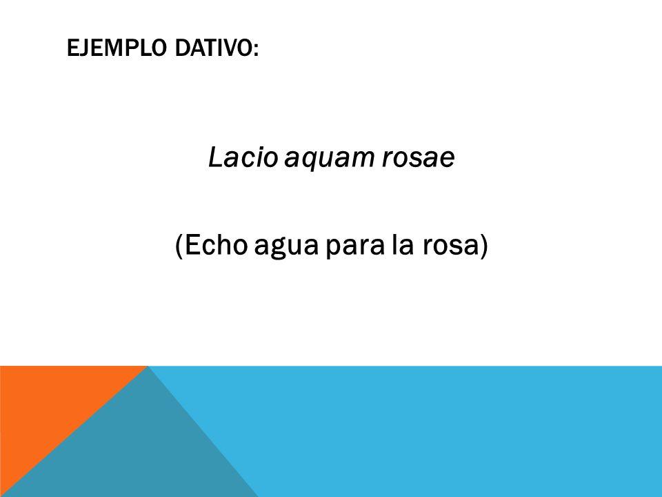 Lacio aquam rosae (Echo agua para la rosa)