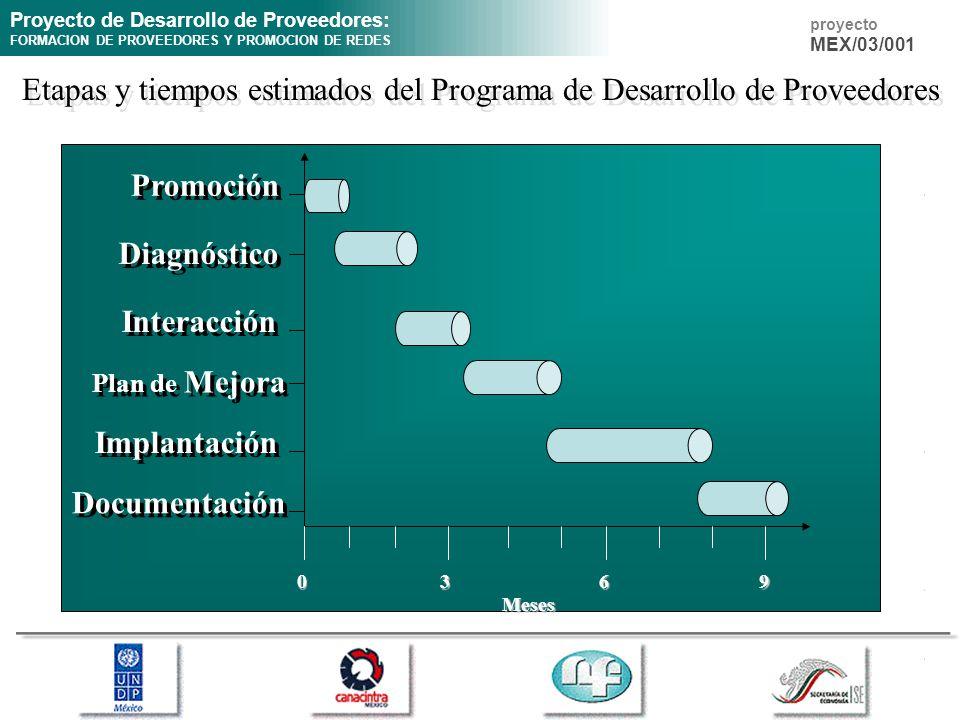 Etapas y tiempos estimados del Programa de Desarrollo de Proveedores