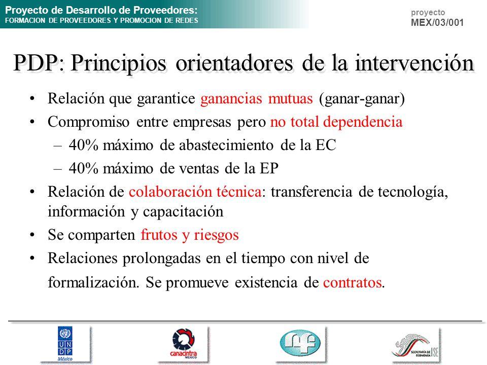 PDP: Principios orientadores de la intervención