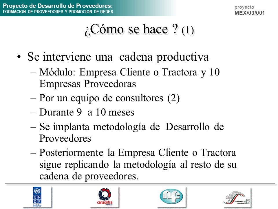 ¿Cómo se hace (1) Se interviene una cadena productiva