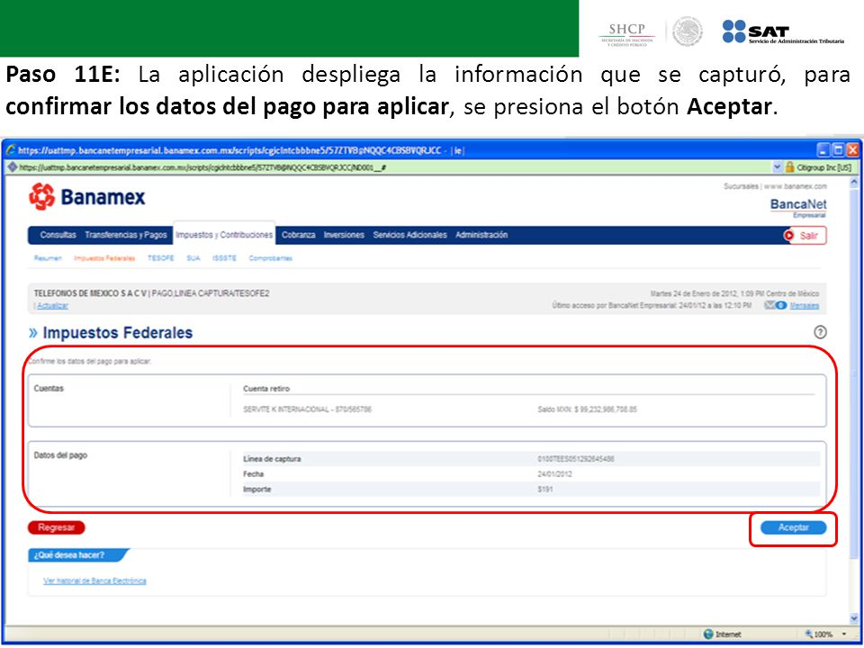 Paso 11E: La aplicación despliega la información que se capturó, para confirmar los datos del pago para aplicar, se presiona el botón Aceptar.