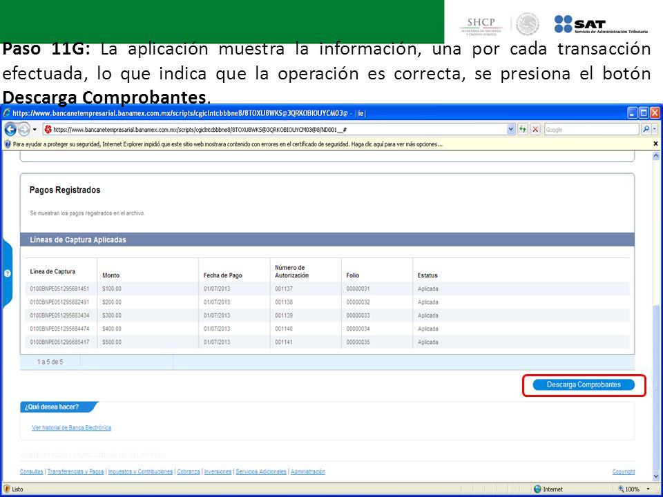 Paso 11G: La aplicación muestra la información, una por cada transacción efectuada, lo que indica que la operación es correcta, se presiona el botón Descarga Comprobantes.