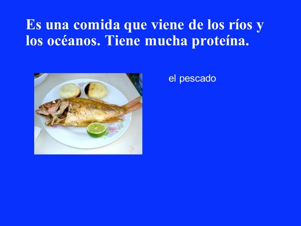 Es una comida que viene de los ríos y los océanos. Tiene mucha proteína.