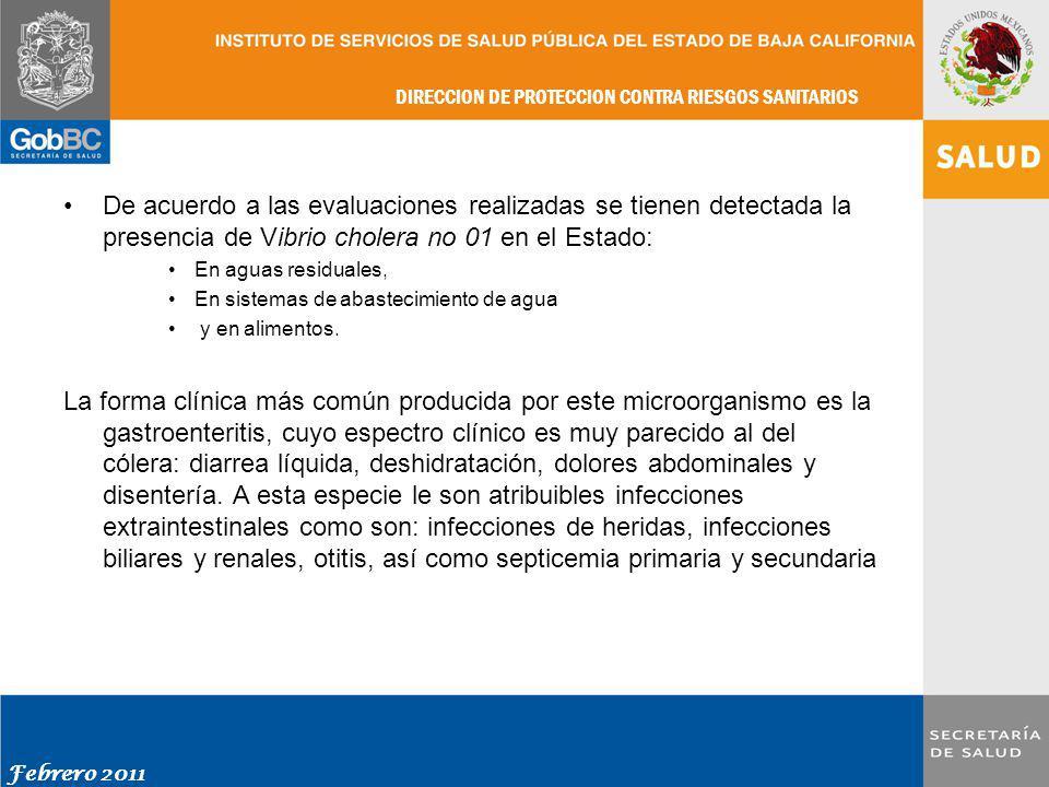 De acuerdo a las evaluaciones realizadas se tienen detectada la presencia de Vibrio cholera no 01 en el Estado: