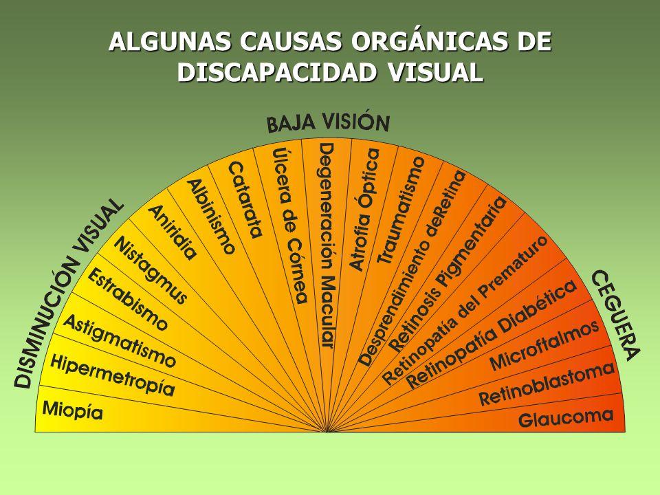 ALGUNAS CAUSAS ORGÁNICAS DE DISCAPACIDAD VISUAL
