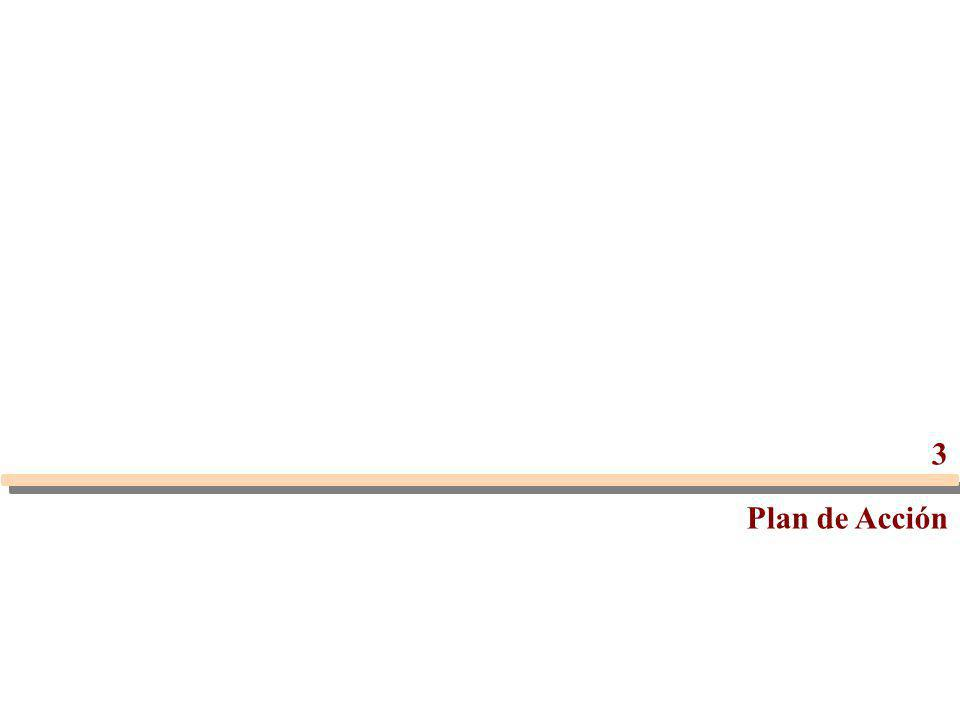 3 Plan de Acción