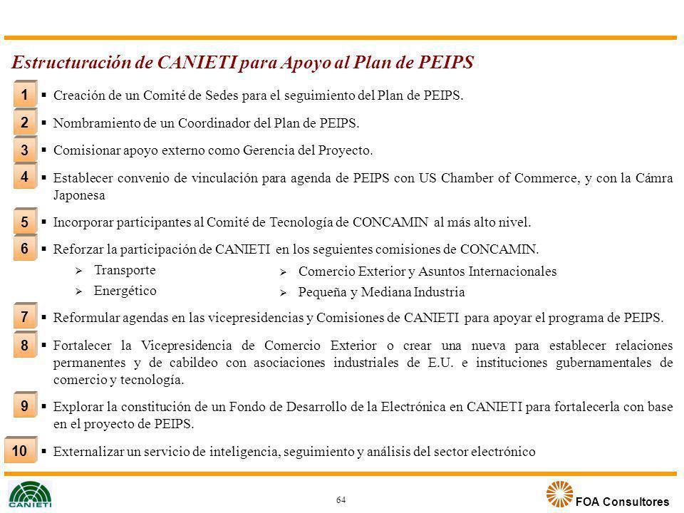 Estructuración de CANIETI para Apoyo al Plan de PEIPS