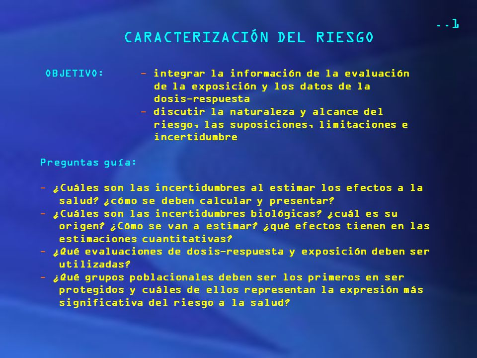 CARACTERIZACIÓN DEL RIESGO