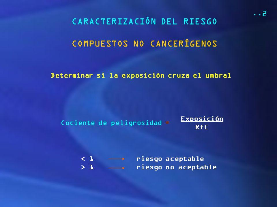 CARACTERIZACIÓN DEL RIESGO COMPUESTOS NO CANCERÍGENOS