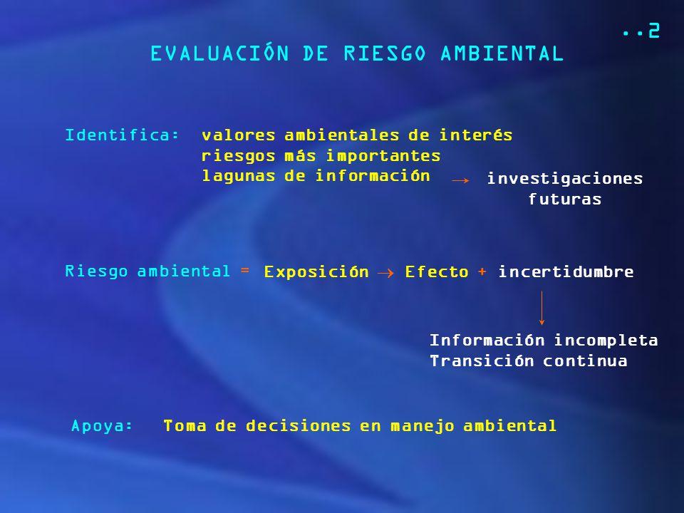 EVALUACIÓN DE RIESGO AMBIENTAL
