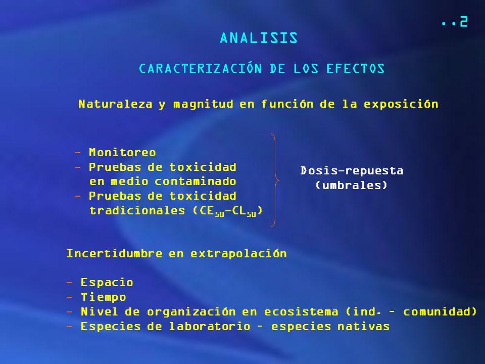 ..2 ANALISIS CARACTERIZACIÓN DE LOS EFECTOS