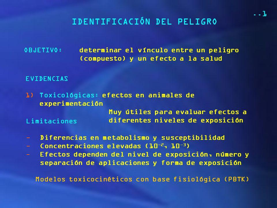 Modelos toxicocinéticos con base fisiológica (PBTK)