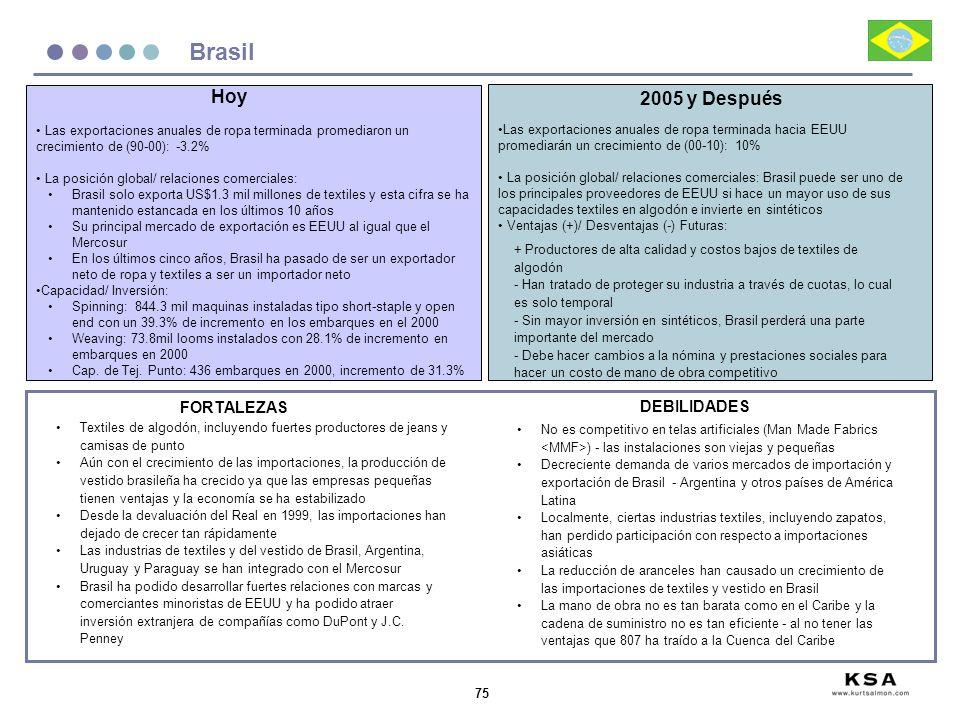 Brasil Hoy 2005 y Después FORTALEZAS DEBILIDADES