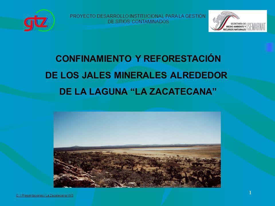 CONFINAMIENTO Y REFORESTACIÓN DE LOS JALES MINERALES ALREDEDOR