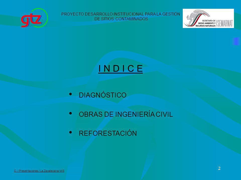 I N D I C E DIAGNÓSTICO OBRAS DE INGENIERÍA CIVIL REFORESTACIÓN