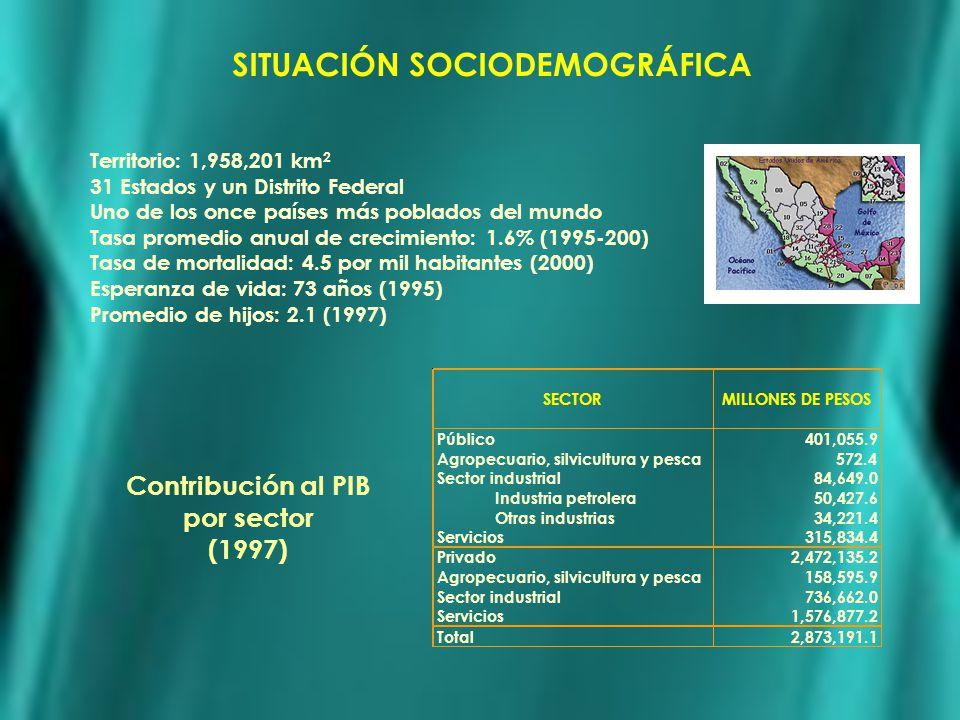 SITUACIÓN SOCIODEMOGRÁFICA Contribución al PIB por sector