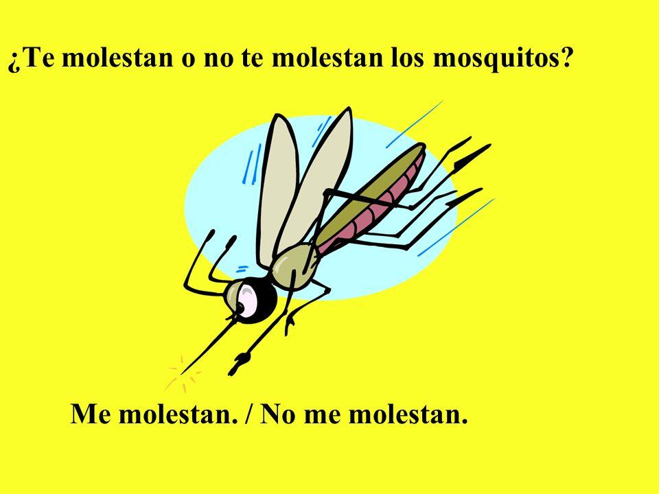 ¿Te molestan o no te molestan los mosquitos