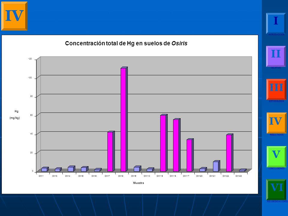 IV I II III IV V VI Concentración total de Hg en suelos de Osiris Hg
