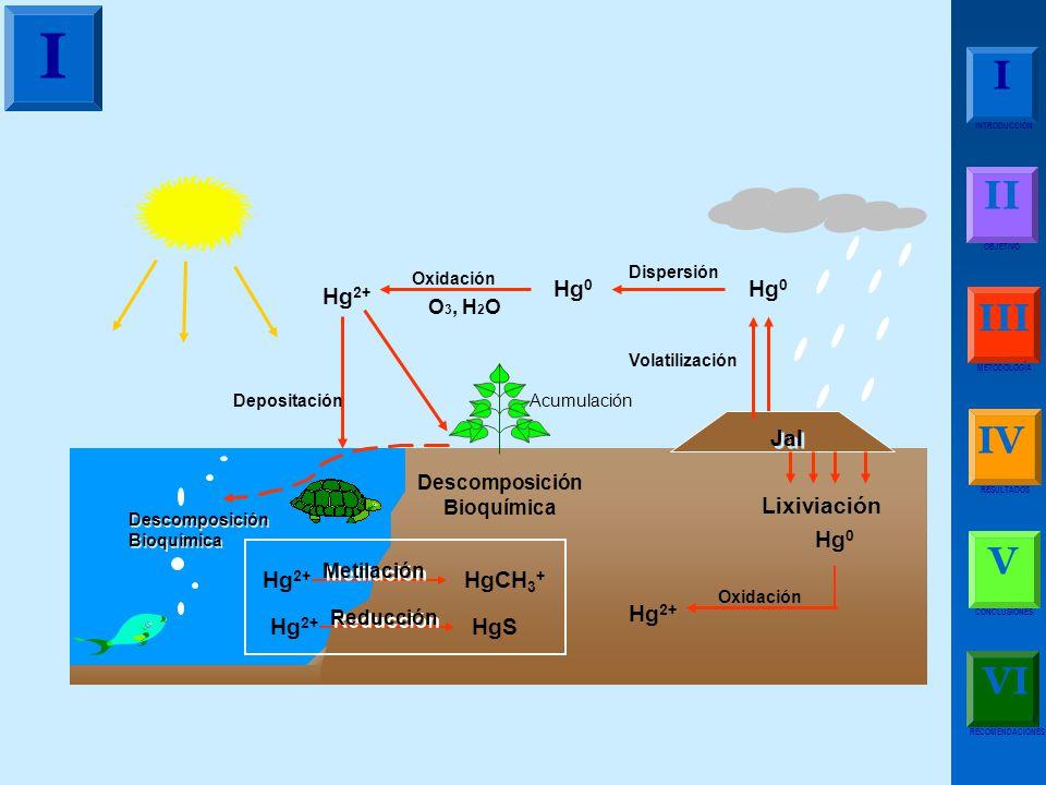 I I II III IV V VI Hg0 Hg2+ Jal Lixiviación HgCH3+ HgS O3, H2O