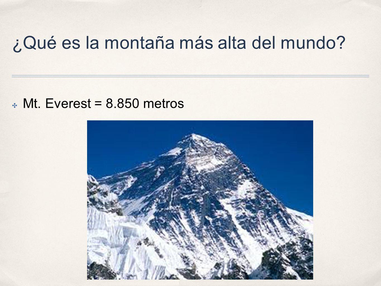 ¿Qué es la montaña más alta del mundo