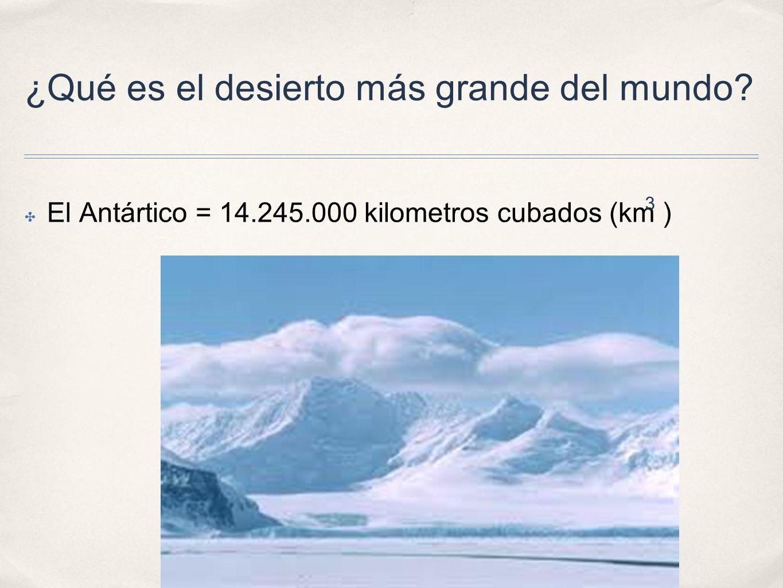 ¿Qué es el desierto más grande del mundo