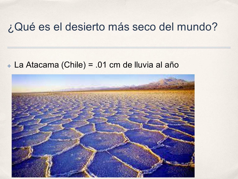 ¿Qué es el desierto más seco del mundo