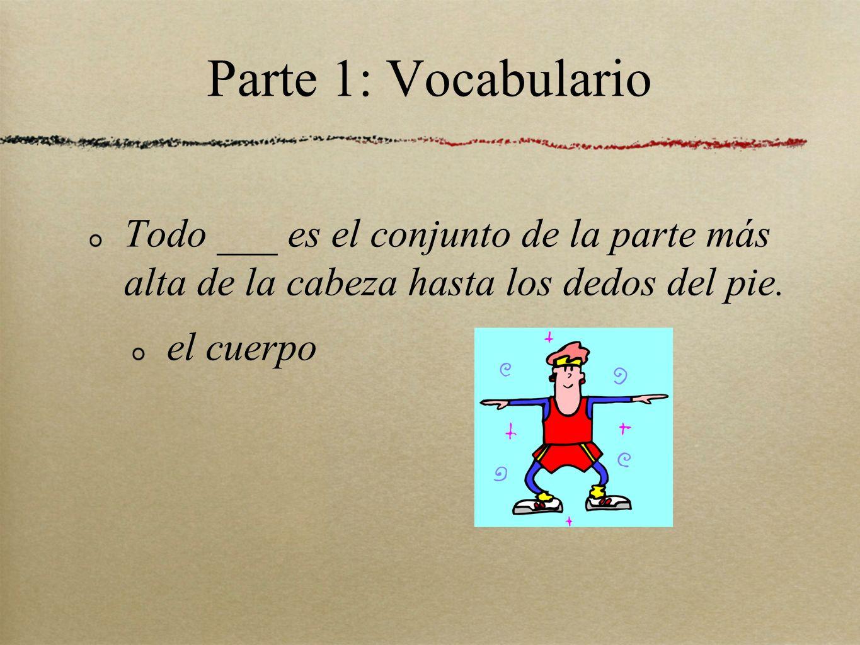 Parte 1: Vocabulario Todo ___ es el conjunto de la parte más alta de la cabeza hasta los dedos del pie.
