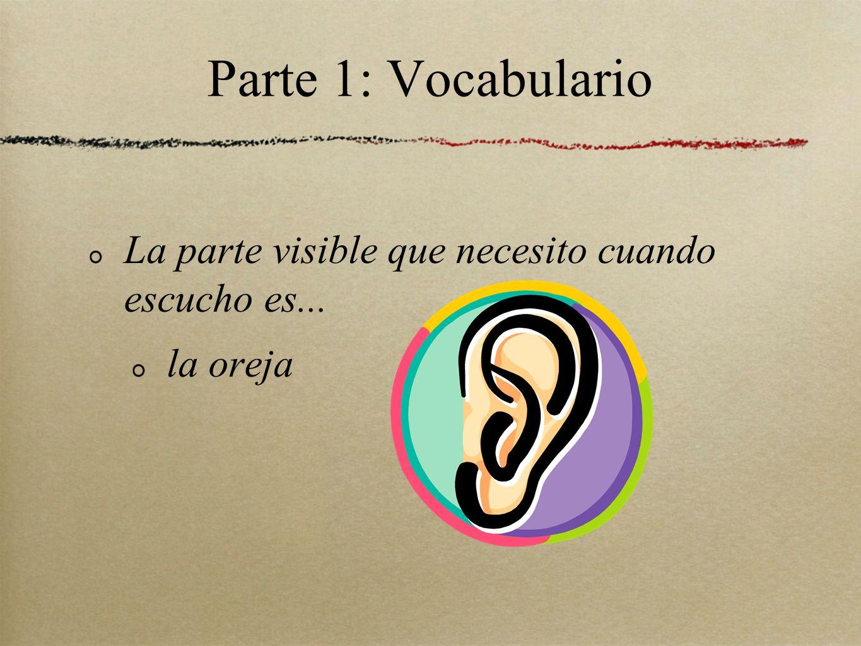 Parte 1: Vocabulario La parte visible que necesito cuando escucho es... la oreja