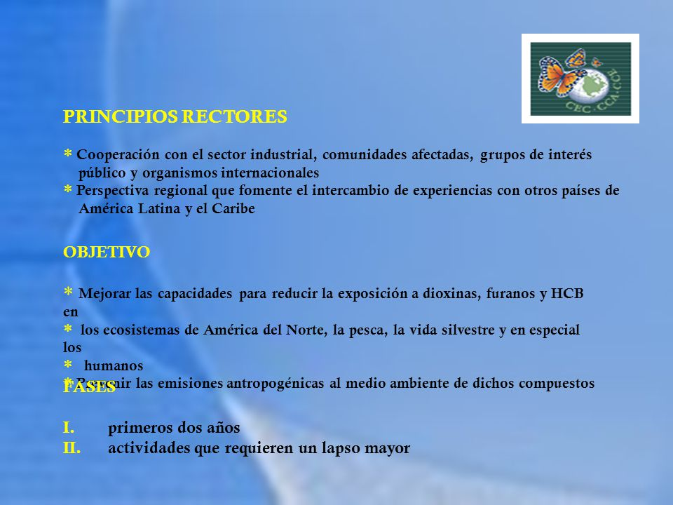 PRINCIPIOS RECTORES OBJETIVO