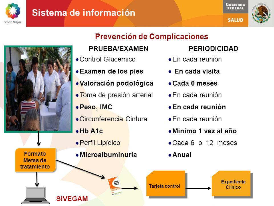 Prevención de Complicaciones Formato Metas de tratamiento