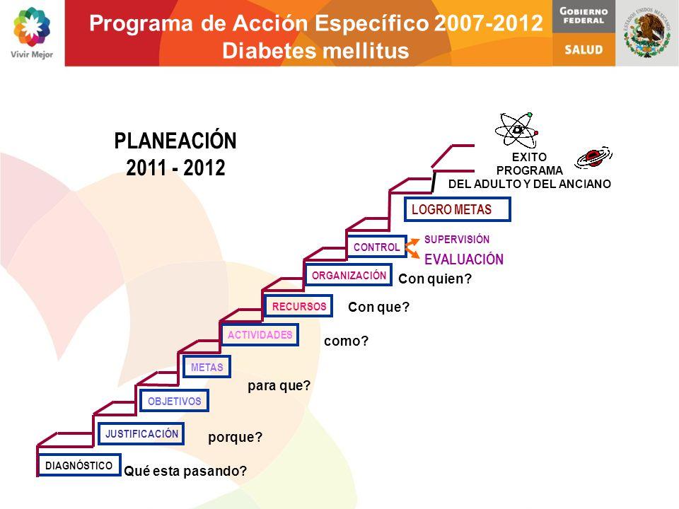 Programa de Acción Específico 2007-2012 Diabetes mellitus