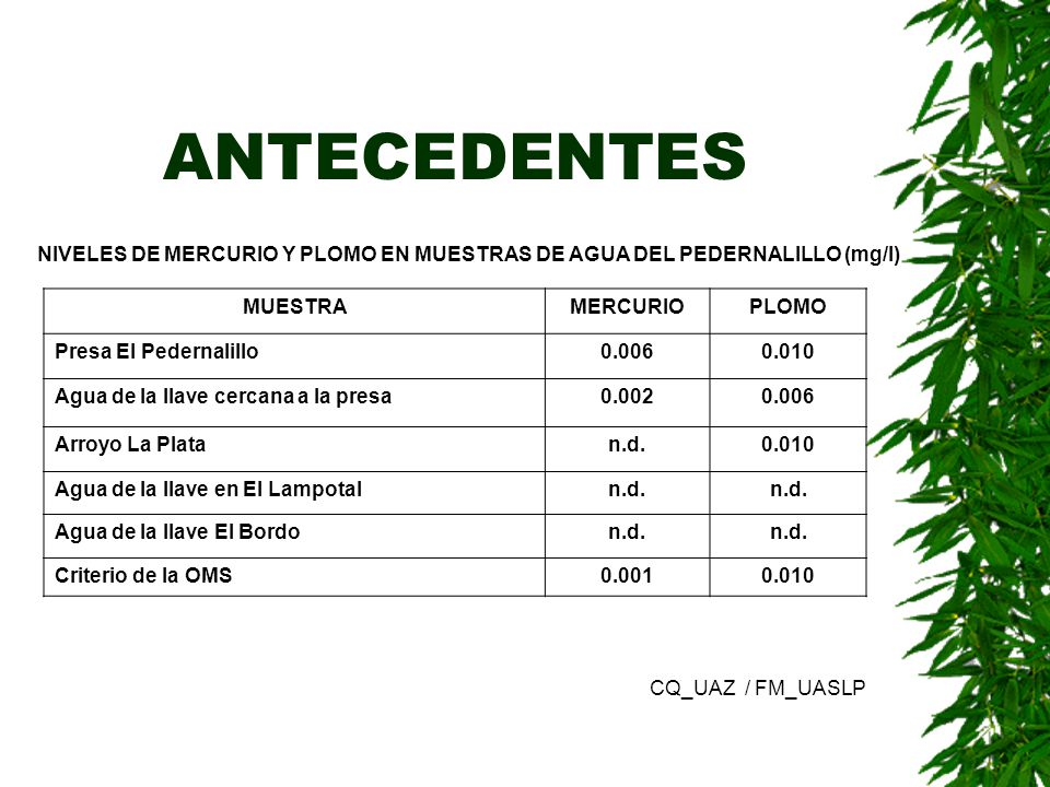 ANTECEDENTES NIVELES DE MERCURIO Y PLOMO EN MUESTRAS DE AGUA DEL PEDERNALILLO (mg/l) MUESTRA. MERCURIO.