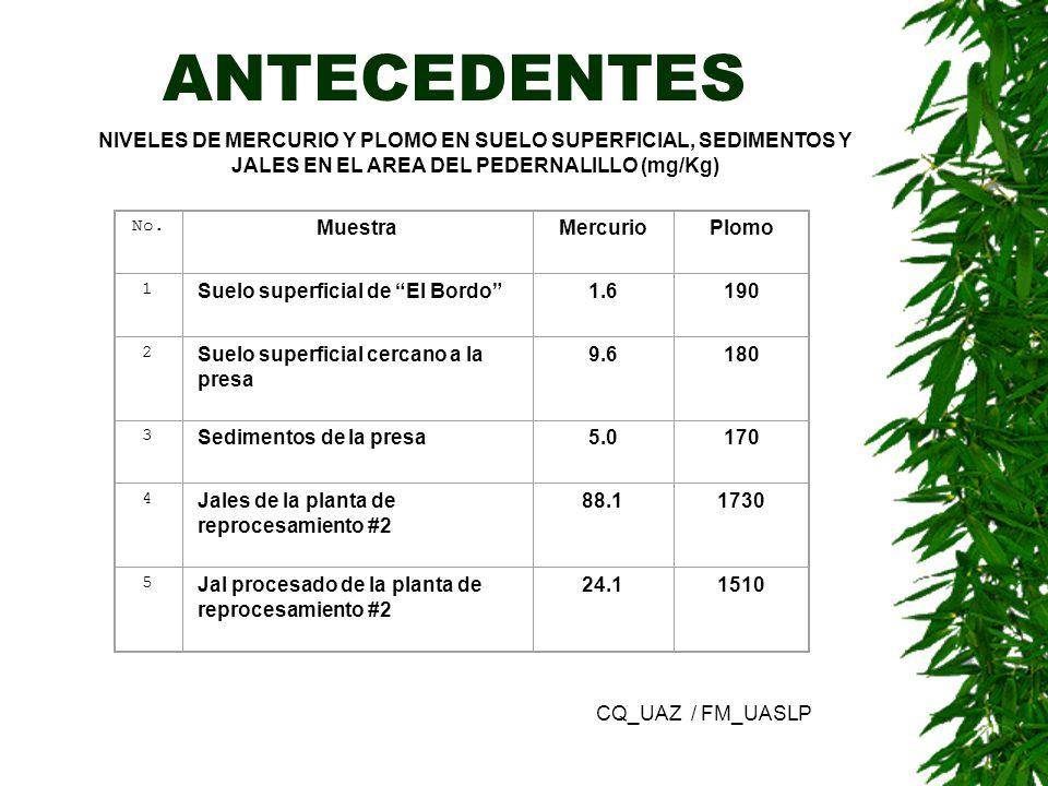 ANTECEDENTES NIVELES DE MERCURIO Y PLOMO EN SUELO SUPERFICIAL, SEDIMENTOS Y JALES EN EL AREA DEL PEDERNALILLO (mg/Kg)