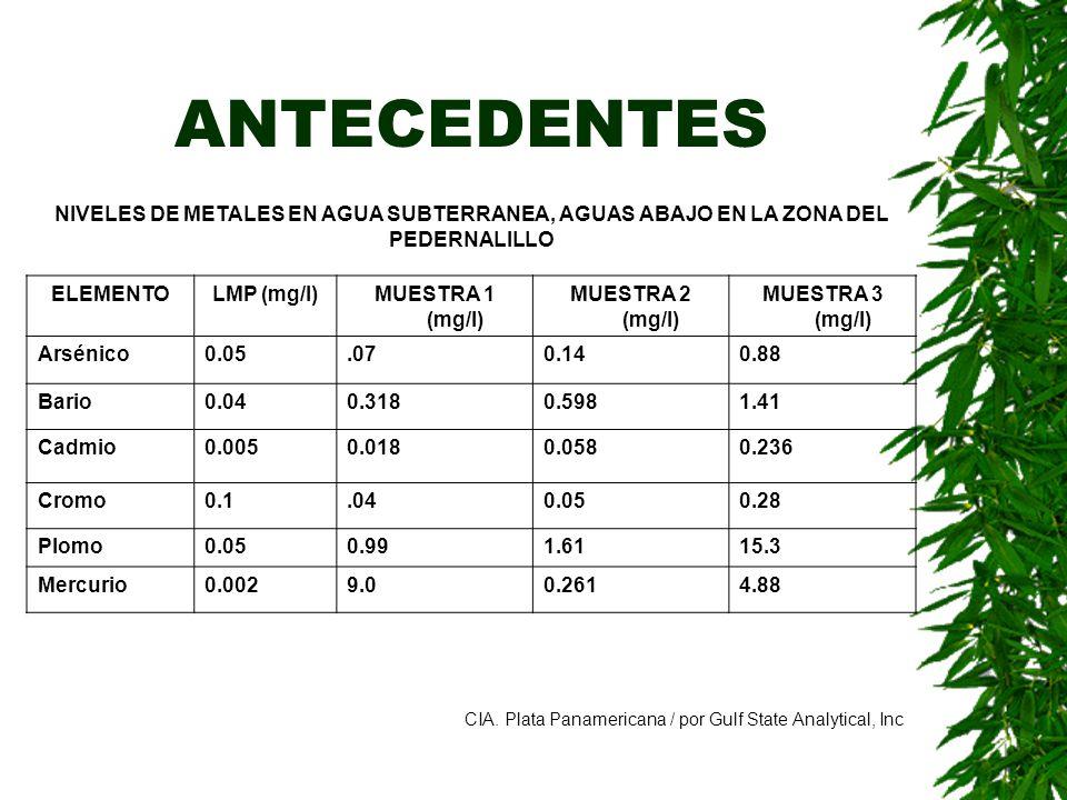 ANTECEDENTES NIVELES DE METALES EN AGUA SUBTERRANEA, AGUAS ABAJO EN LA ZONA DEL PEDERNALILLO. ELEMENTO.
