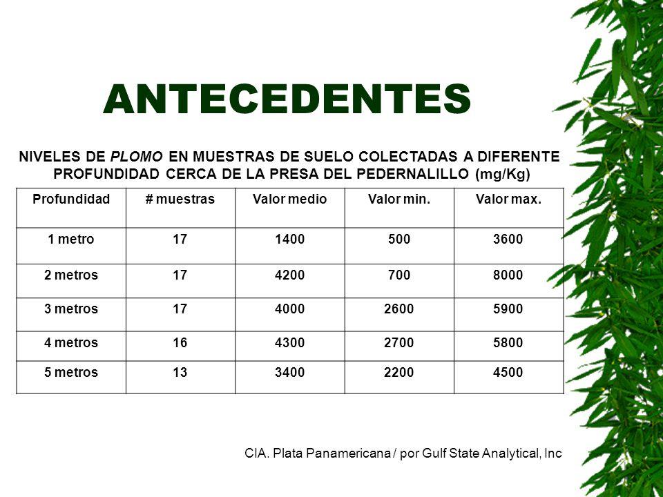 ANTECEDENTES NIVELES DE PLOMO EN MUESTRAS DE SUELO COLECTADAS A DIFERENTE. PROFUNDIDAD CERCA DE LA PRESA DEL PEDERNALILLO (mg/Kg)