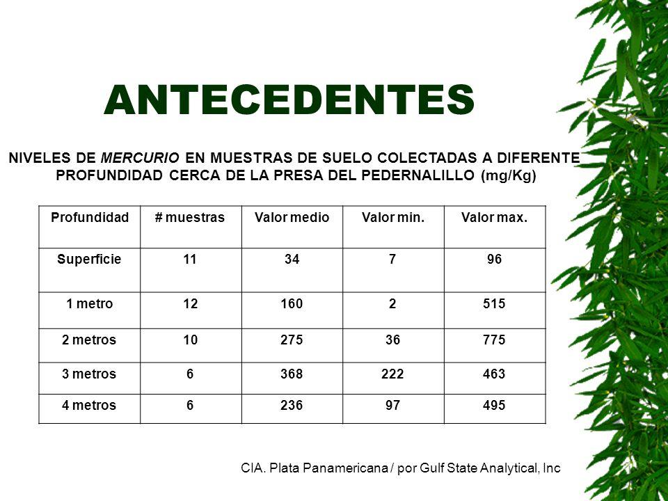 ANTECEDENTES NIVELES DE MERCURIO EN MUESTRAS DE SUELO COLECTADAS A DIFERENTE. PROFUNDIDAD CERCA DE LA PRESA DEL PEDERNALILLO (mg/Kg)