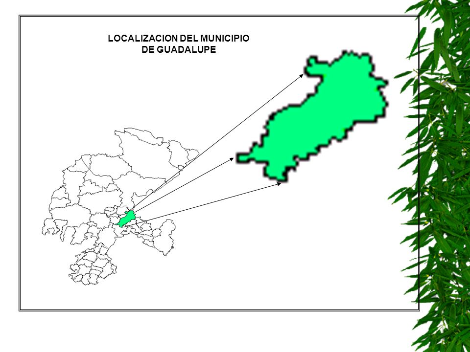 LOCALIZACION DEL MUNICIPIO
