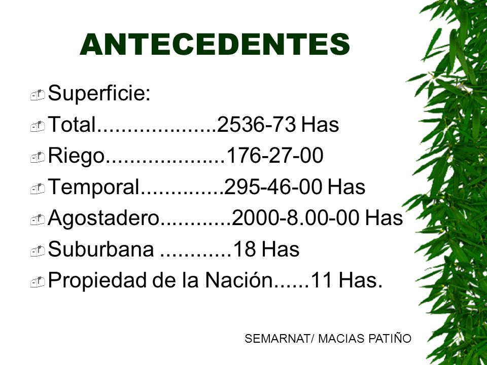 ANTECEDENTES Superficie: Total....................2536-73 Has