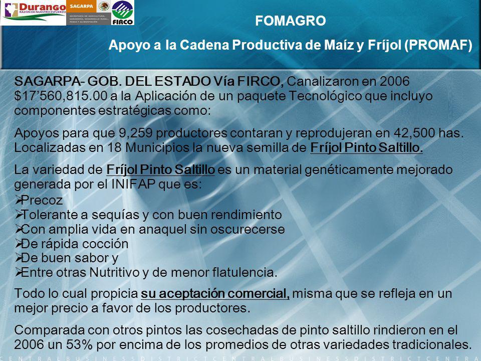 Apoyo a la Cadena Productiva de Maíz y Fríjol (PROMAF)