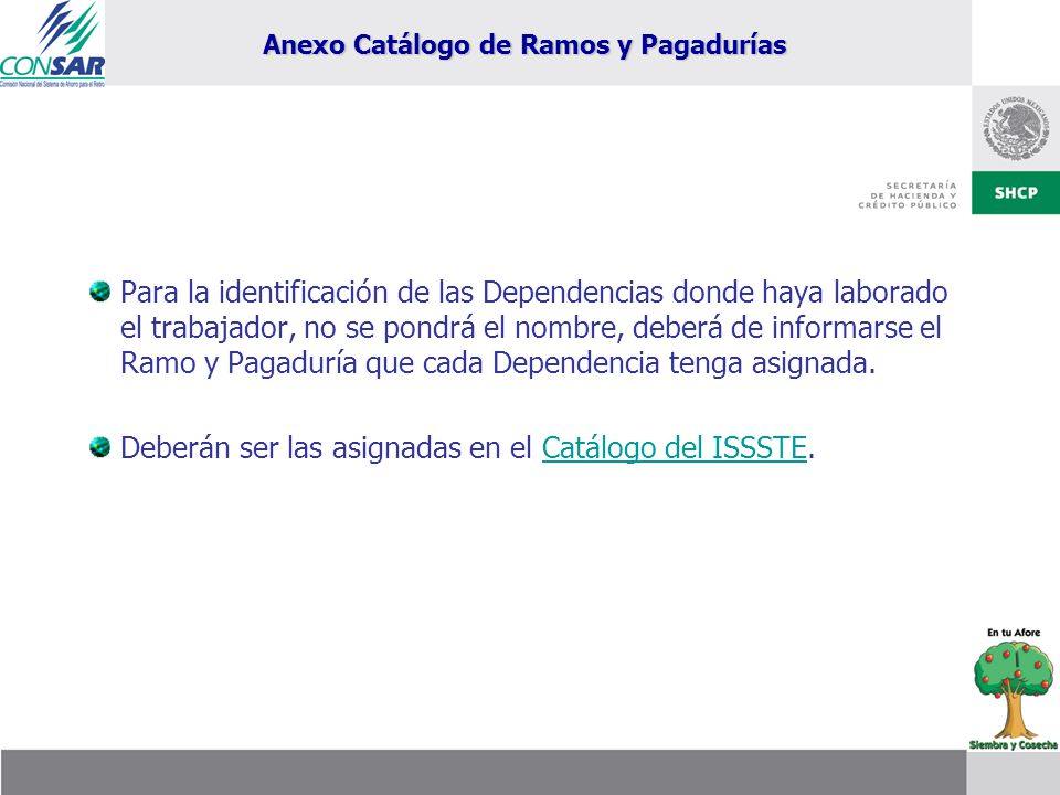 Anexo Catálogo de Ramos y Pagadurías