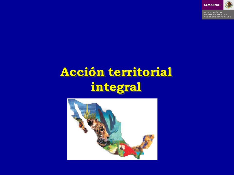 Acción territorial integral